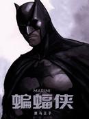 蝙蝠侠-黑马骑士
