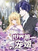 世界第一宠婚